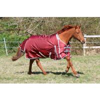 SALE - Guardian Equestrian - Horse Rugs