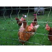 Poultry Netting Kits